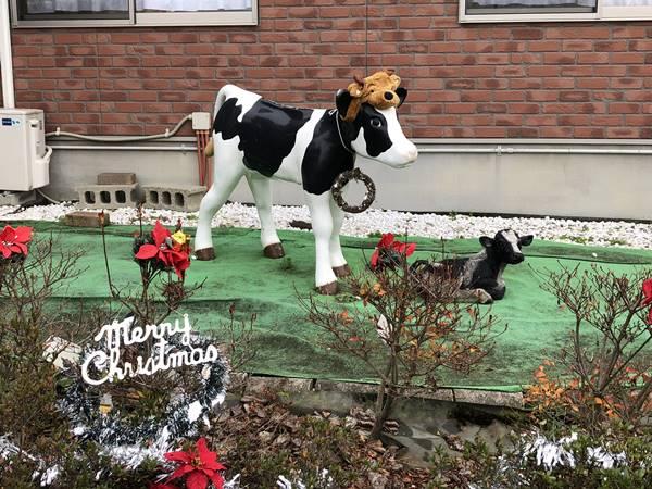 愛知牧場クリスマス